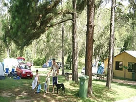 Glasshouse Mountains Holiday Village - Accommodation Port Macquarie