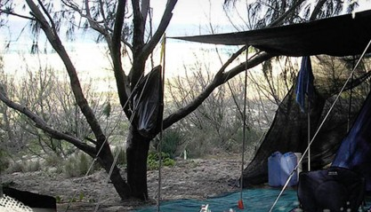 Main Beach Foreshore Camping Grounds - Accommodation Port Macquarie