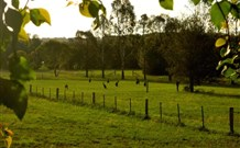 Stone Cottage Mittagong - Accommodation Port Macquarie