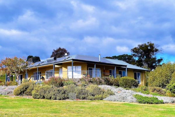 Wild Dog Rise - Accommodation Port Macquarie