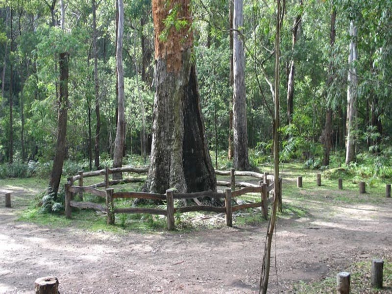 Six Mile Creek campground - Accommodation Port Macquarie