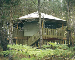 Possums Hideaway - Accommodation Port Macquarie