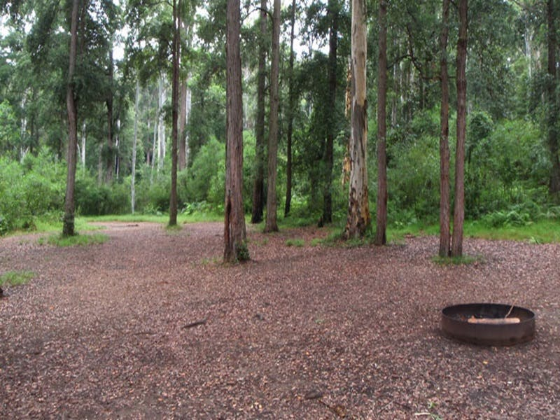 Murphys Glen campground - Accommodation Port Macquarie