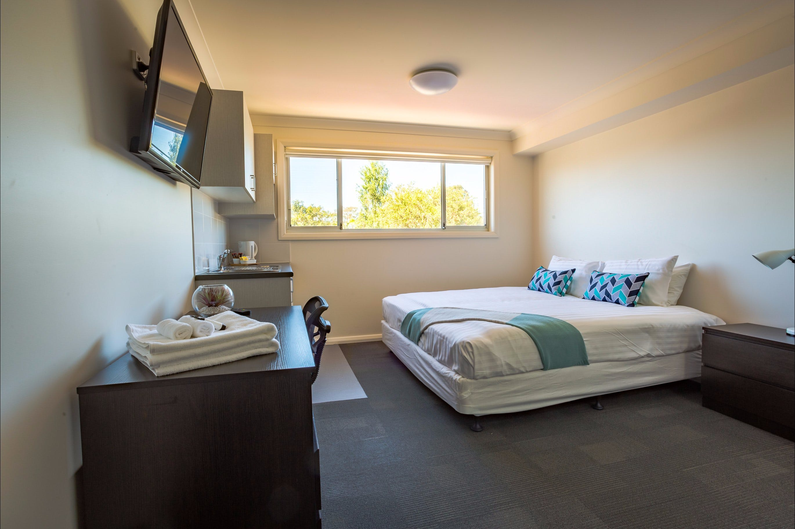 Aspire Mayfield - Accommodation Port Macquarie