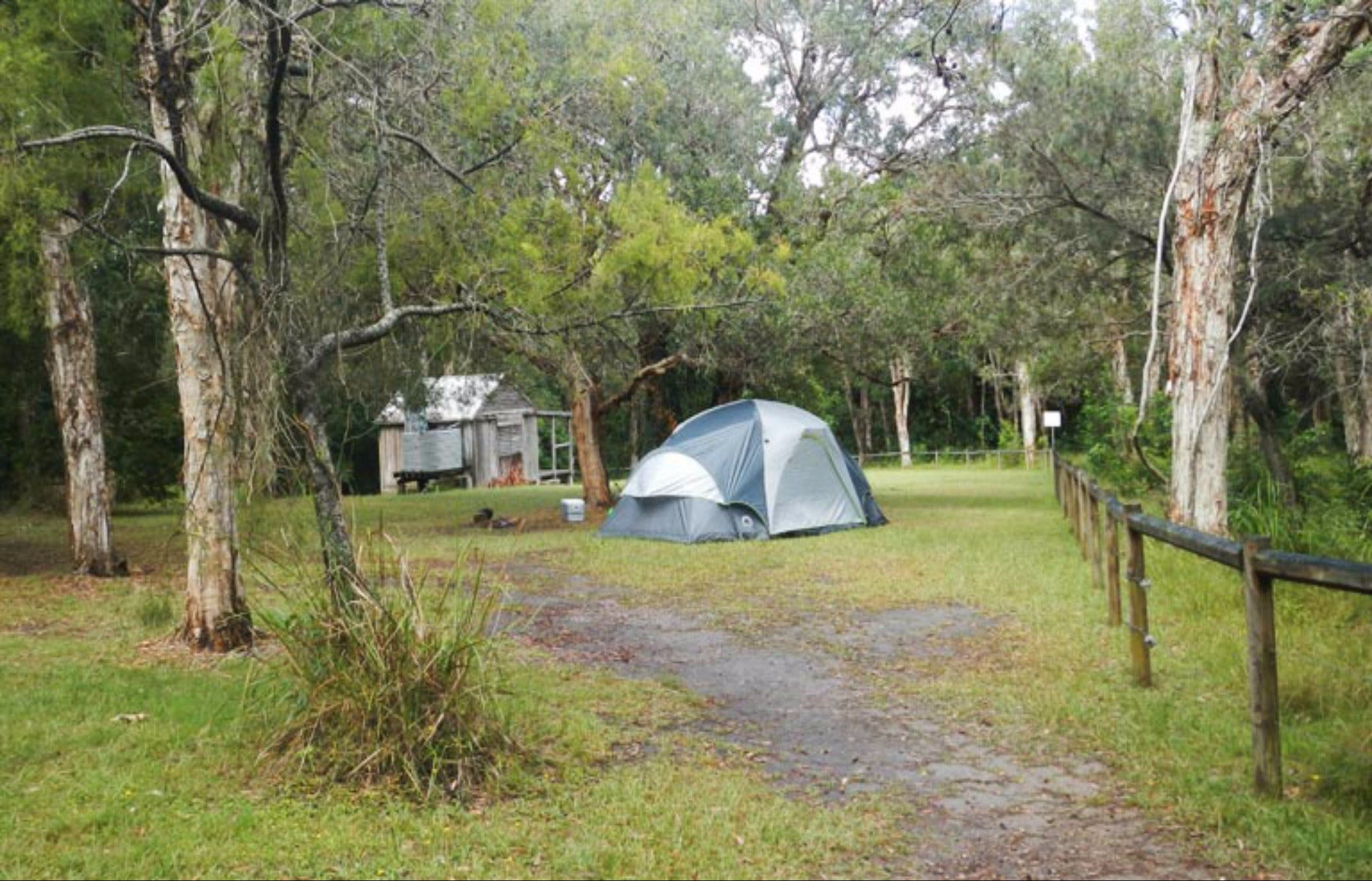 Kylies Hut walk-in campground - Accommodation Port Macquarie
