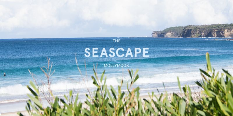 Mollymook Seascape Motel  Apartments - Accommodation Port Macquarie