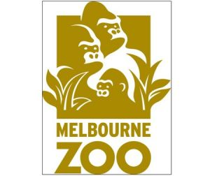 Melbourne Zoo - Accommodation Port Macquarie