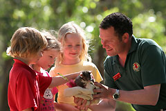 Cleland Wildlife Park - Accommodation Port Macquarie