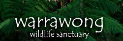 Warrawong Wildlife Park - Accommodation Port Macquarie