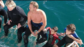 Dolphcom - Dolphin & Whale Swimming Adventures - Accommodation Port Macquarie