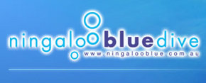 Ningaloo Blue Dive - Accommodation Port Macquarie