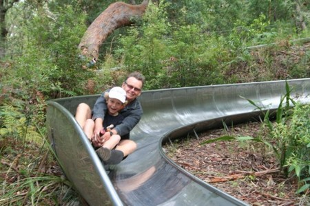 Toboggan Hill Park - Accommodation Port Macquarie
