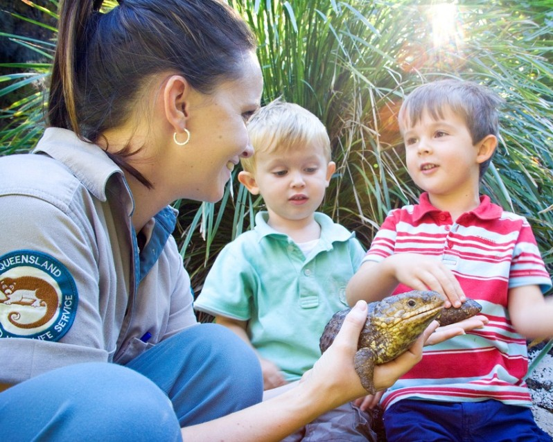 David Fleay Wildlife Park - Accommodation Port Macquarie