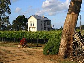 Highbank Vineyards - Accommodation Port Macquarie