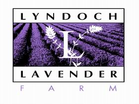 Lyndoch Lavender Farm and Cafe - Accommodation Port Macquarie