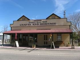 Dolly's Golden Raintree Craft and Heritage Centre - Accommodation Port Macquarie