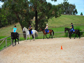 Megan Jones Riding School and Trail Rides - Accommodation Port Macquarie