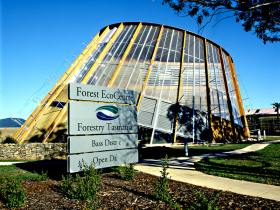 Forest EcoCentre - Accommodation Port Macquarie