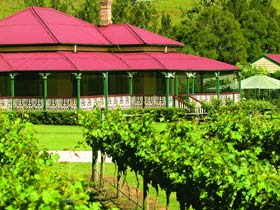 OReillys Canungra Valley Vineyards - Accommodation Port Macquarie