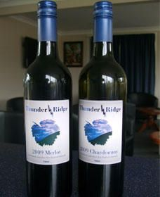 Thunder Ridge Wines - Accommodation Port Macquarie
