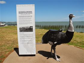 Birdman of the Coorong - Accommodation Port Macquarie
