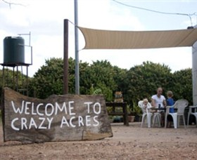 Crazy Acres - Accommodation Port Macquarie