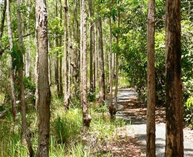 Hallorans Hill Conservation Park - Accommodation Port Macquarie