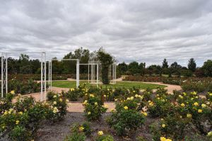 Australian Inland Botanic Gardens - Accommodation Port Macquarie