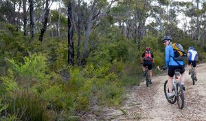 McMahon's Point ride - Wentworth Falls - Accommodation Port Macquarie