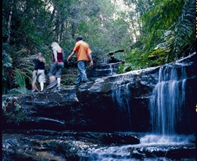 South Lawson Waterfall Circuit - Accommodation Port Macquarie