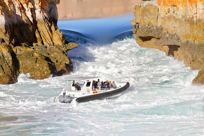 Horizontal Falls Half-Day Tour from Broome - Accommodation Port Macquarie