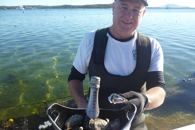Coffin Bay Oyster Farm  Tasting Tour - Accommodation Port Macquarie
