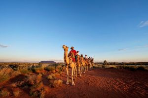 Uluru Small-Group Tour by Camel at Sunrise or Sunset - Accommodation Port Macquarie