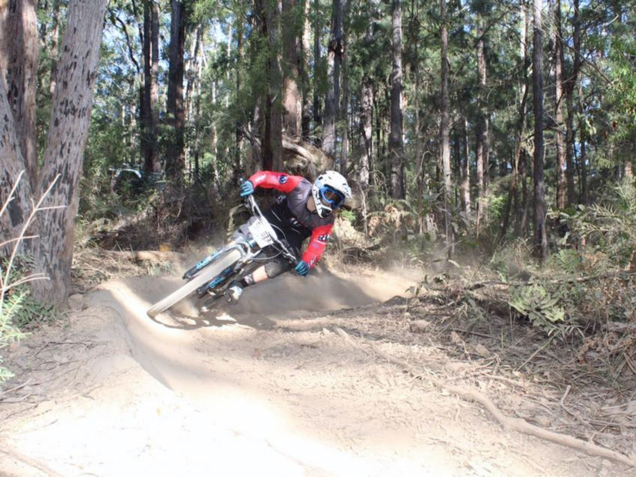 Jolly Nose Mountain Bike Park - Accommodation Port Macquarie