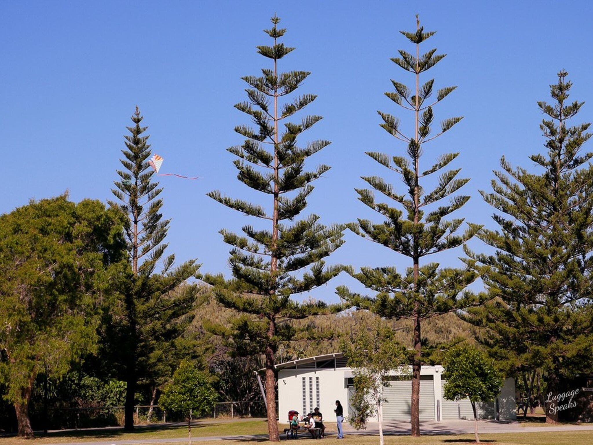 Kurrawa Park - Accommodation Port Macquarie