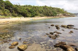 Reef Beach - Accommodation Port Macquarie