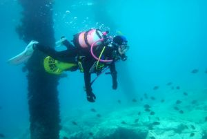Shellharbour Scuba  and Photography Centre - Accommodation Port Macquarie