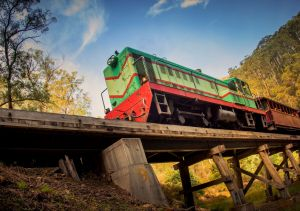 Walhalla Goldfields Railway - Accommodation Port Macquarie