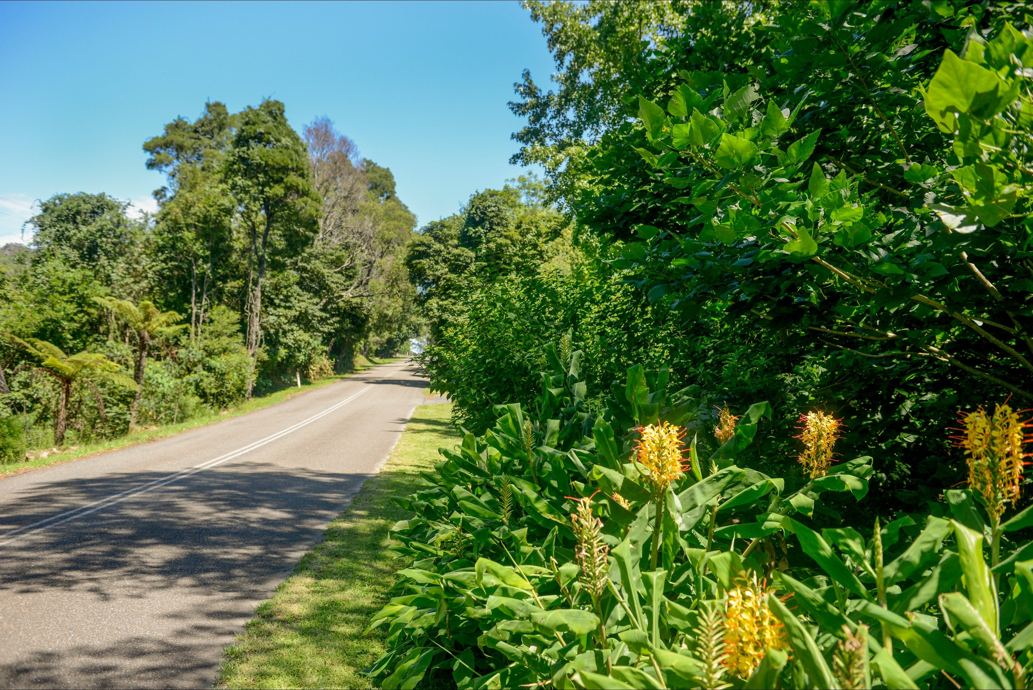 Broughton Vale - Accommodation Port Macquarie