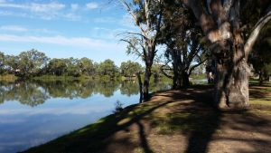 Murray River National Park - Katarapko - Accommodation Port Macquarie
