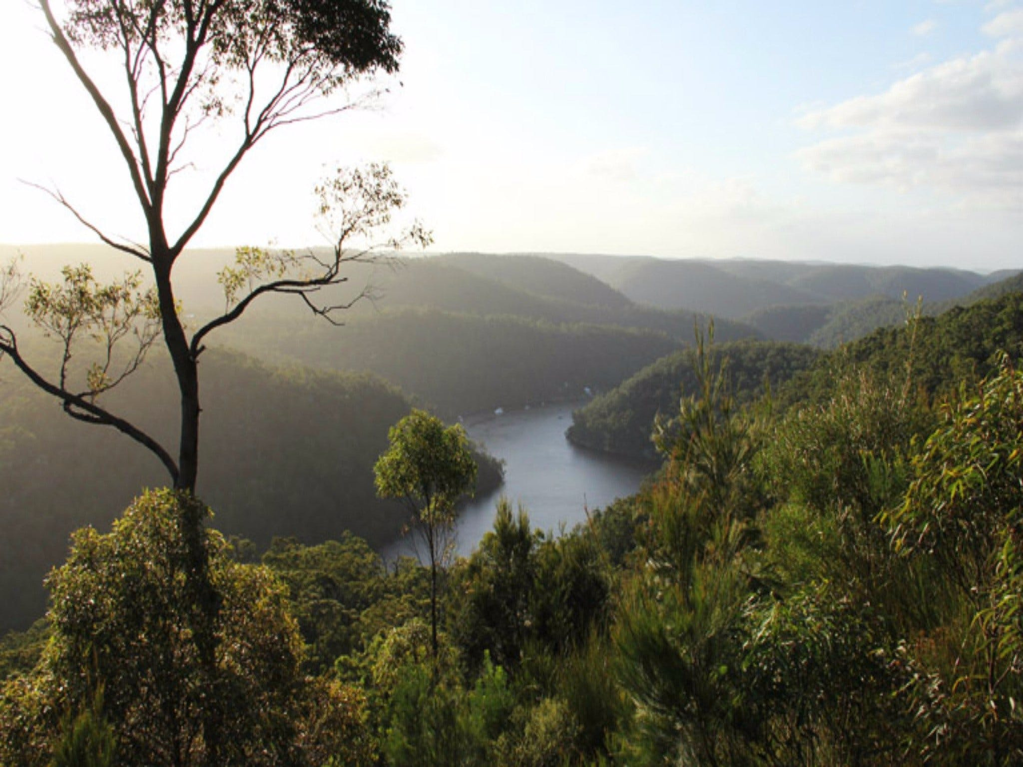 Berowra Valley National Park - Accommodation Port Macquarie