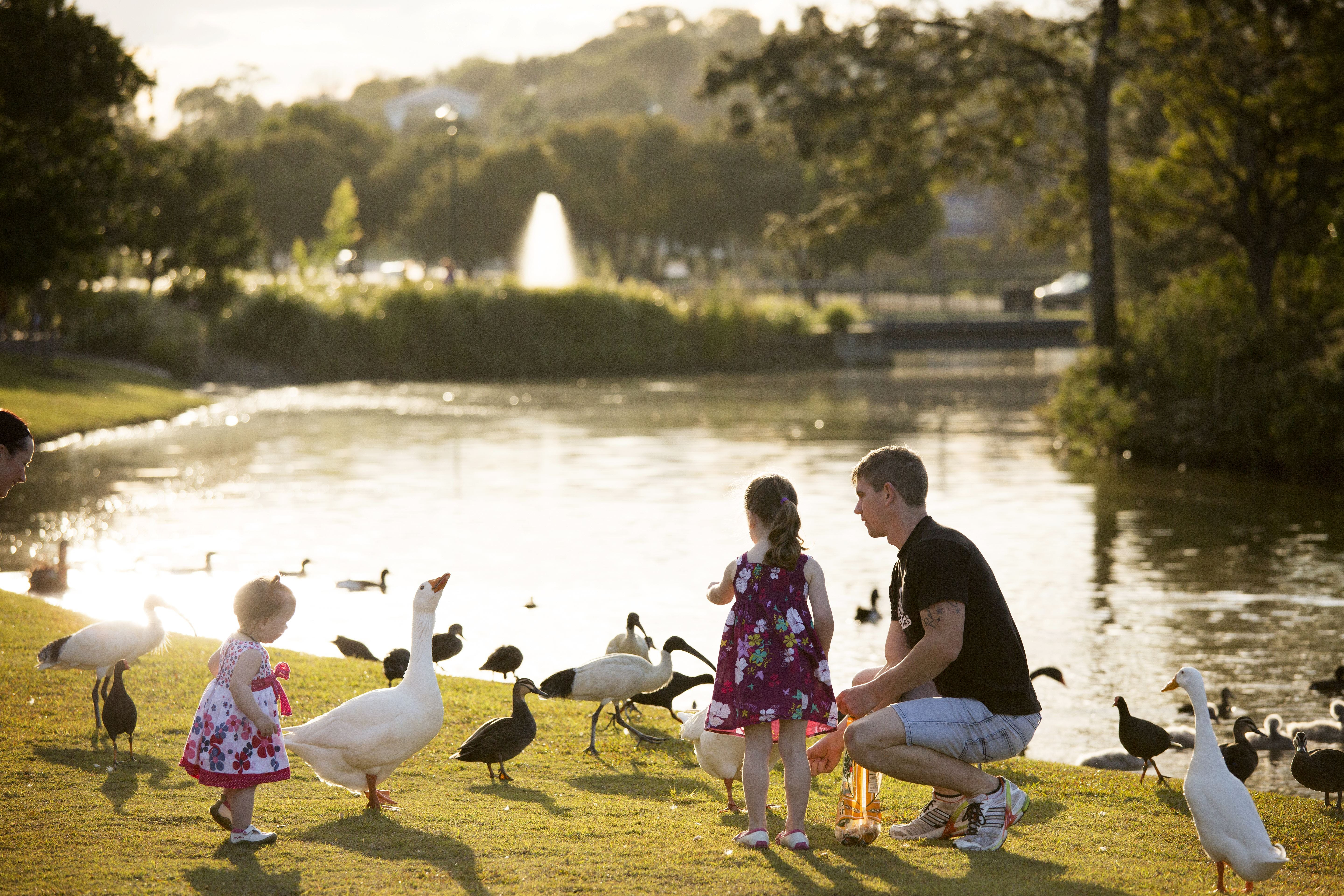 Lake Alford Recreational Park - Accommodation Port Macquarie
