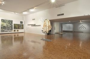 Noosa Regional Gallery - Accommodation Port Macquarie
