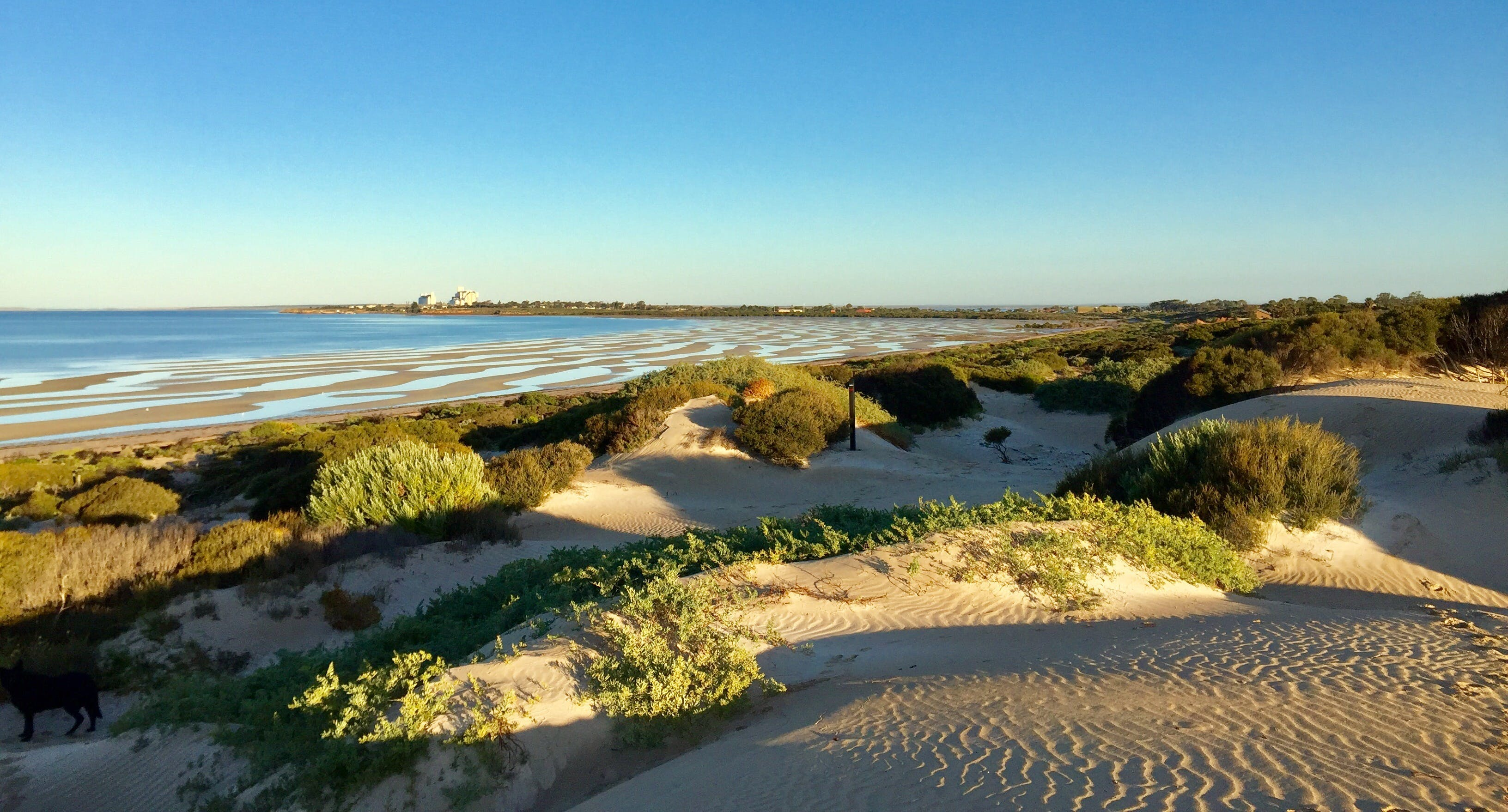 Shelly Beach Dune Walk Trail - Accommodation Port Macquarie
