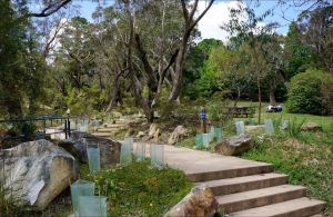 Wentworth Falls picnic area - Accommodation Port Macquarie