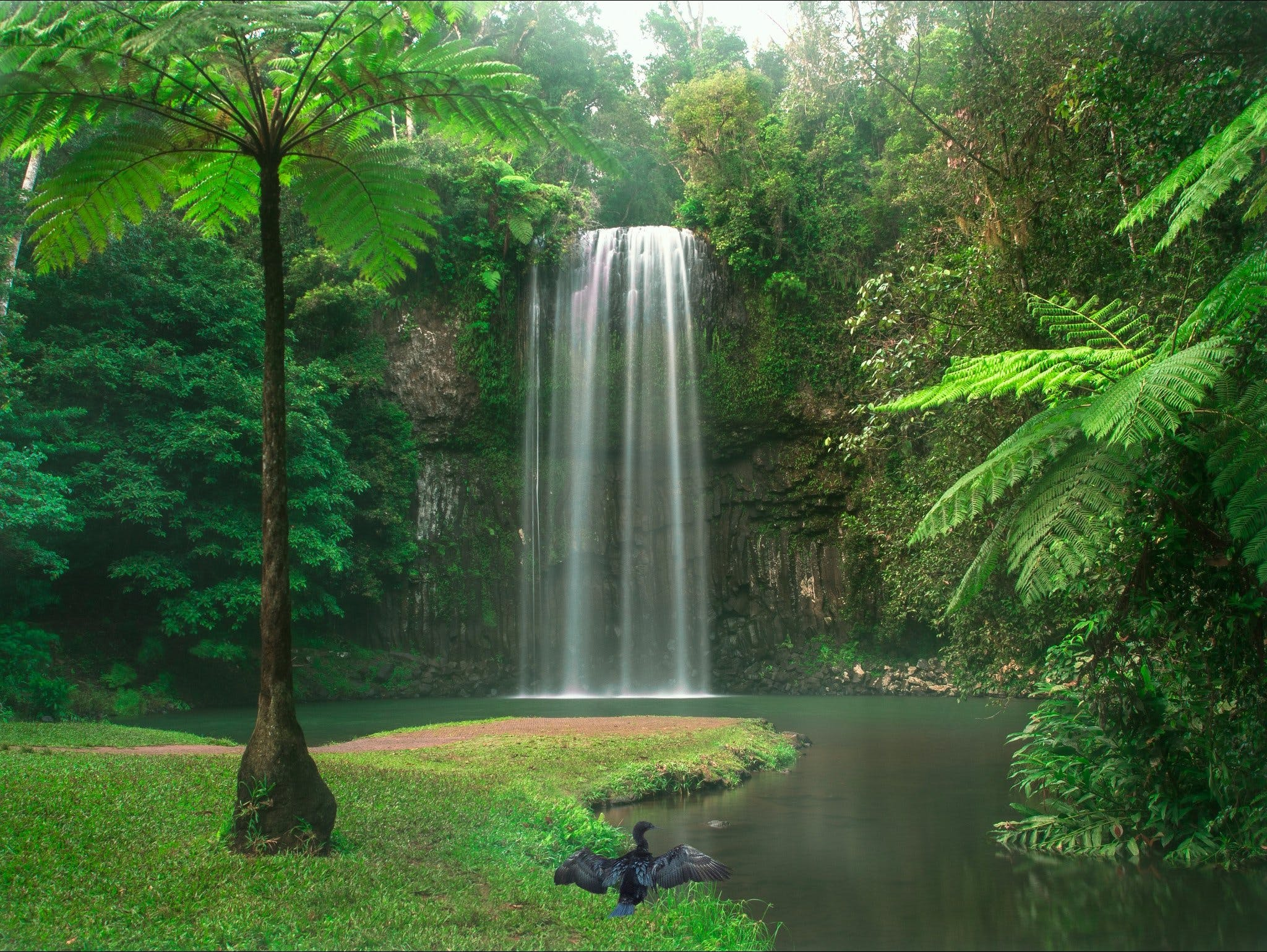 Atherton Tablelands - Accommodation Port Macquarie