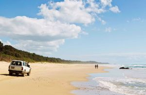 Bongil Bongil National Park - Accommodation Port Macquarie