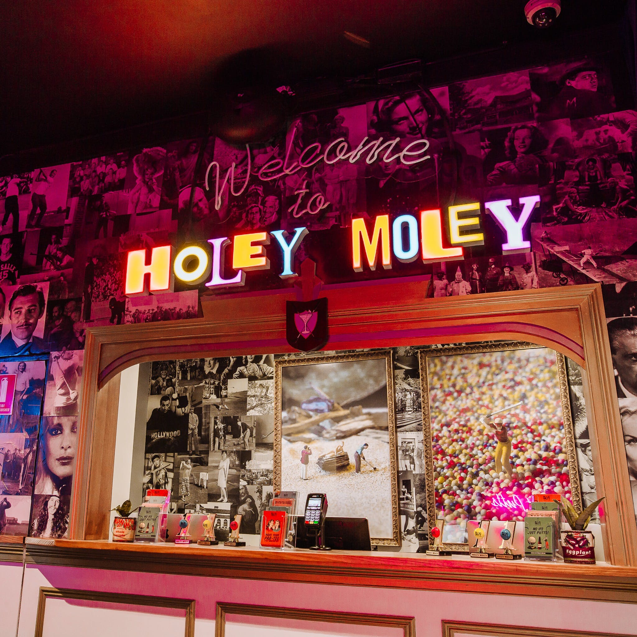 Holey Moley Charlestown - Accommodation Port Macquarie