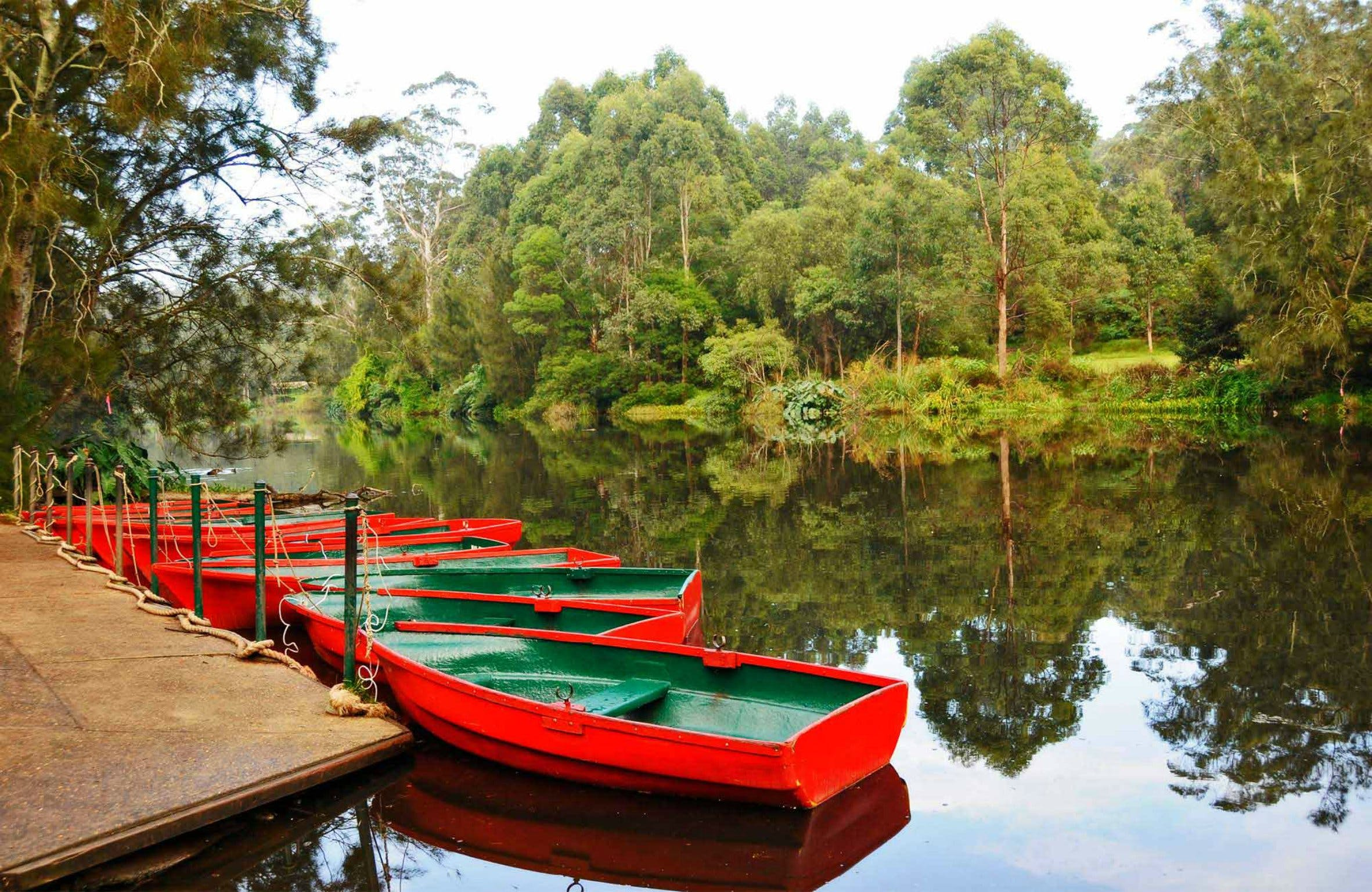 Lane Cove National Park - Accommodation Port Macquarie