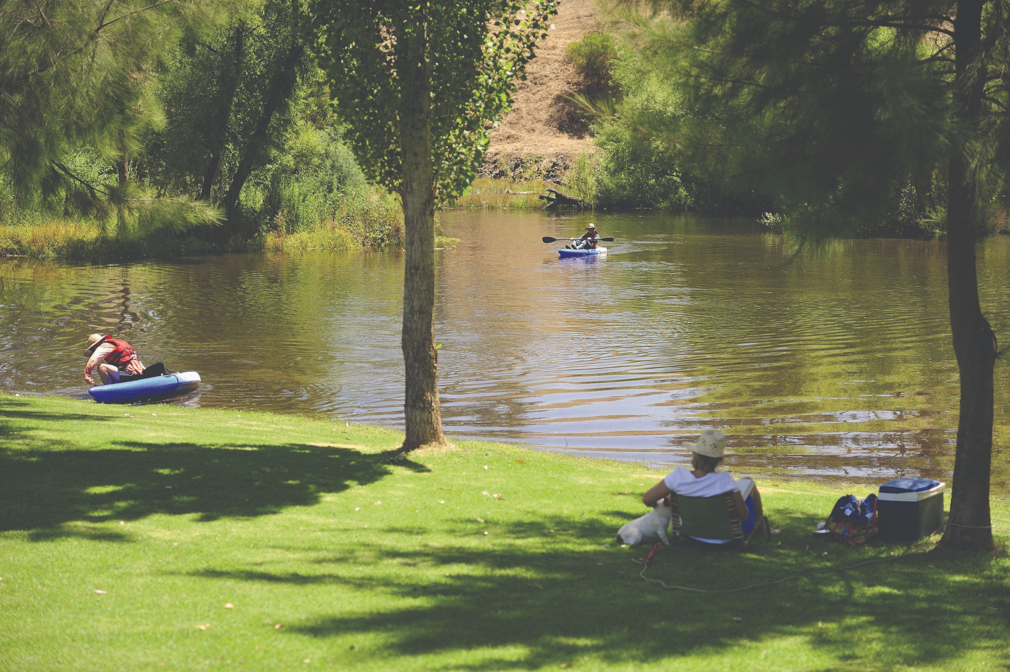 The Lions Junction Park - Tumut - Accommodation Port Macquarie
